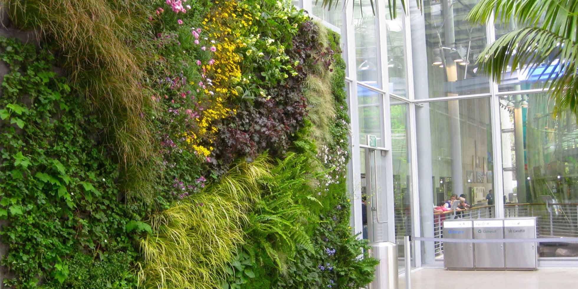California Academy of Sciences Living Wall by Habitat Horticulture - View 3