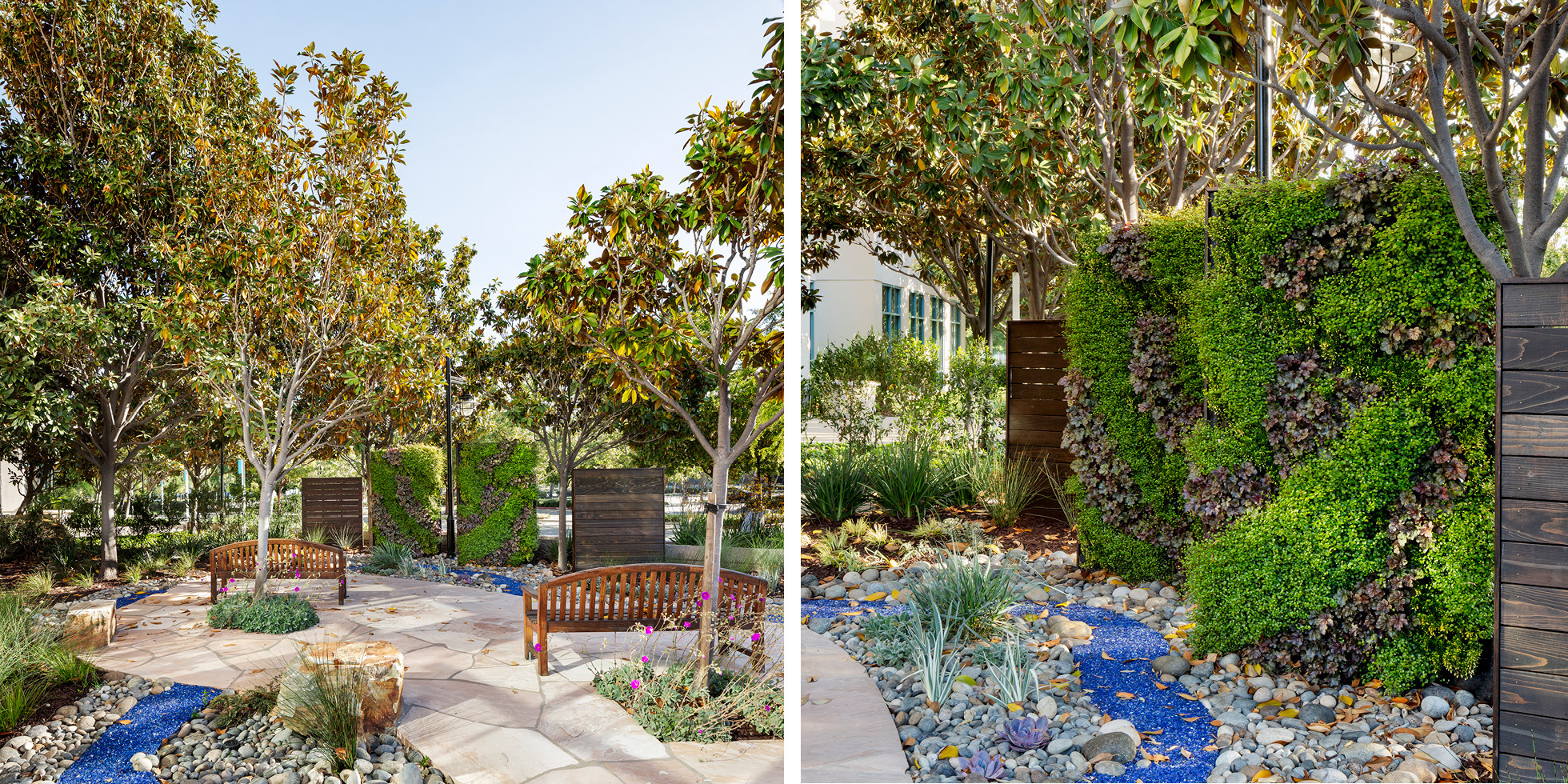 Cisco Reflection Garden Living Wall by Habitat Horticulture - View 3