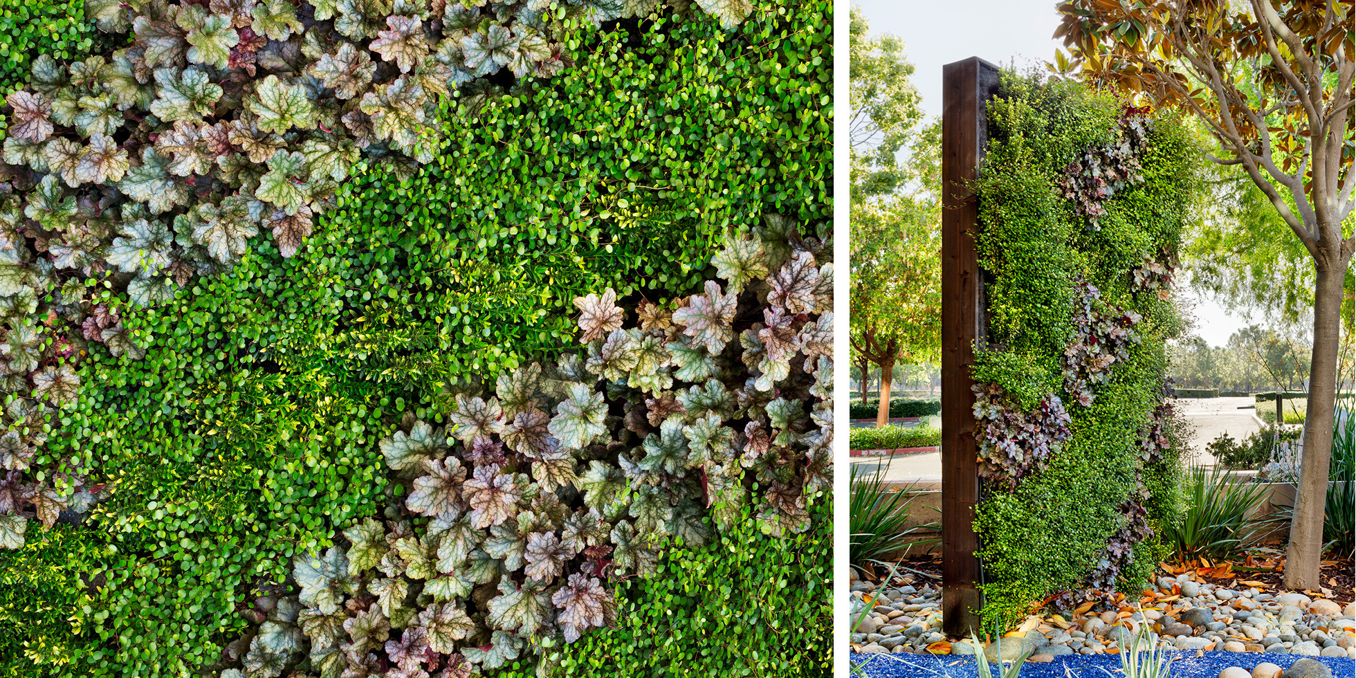 Cisco Reflection Garden Living Wall by Habitat Horticulture - View 5