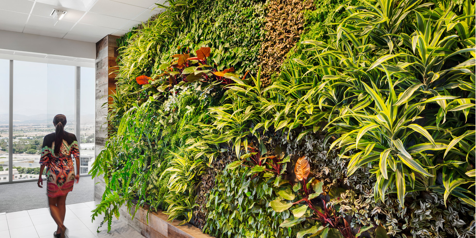 Crown Castle  Living Wall by Habitat Horticulture - View 4