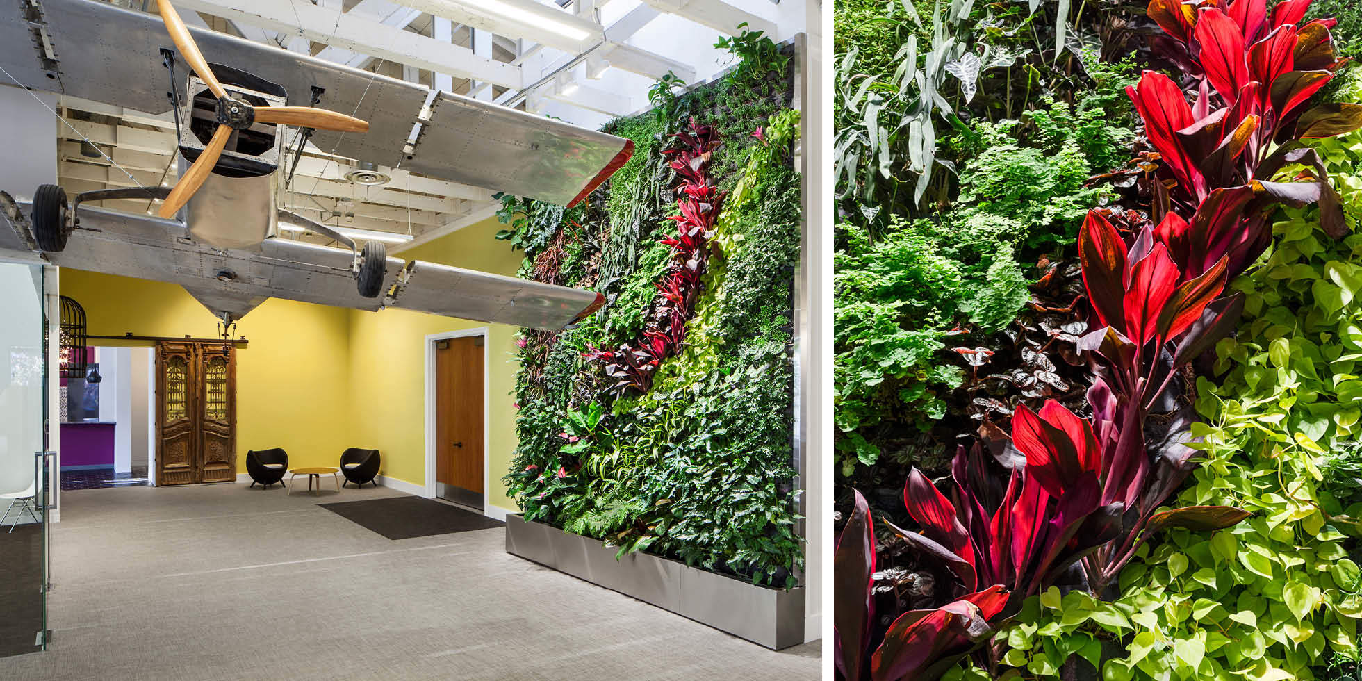 Dailymotion Living Wall by Habitat Horticulture - View 1