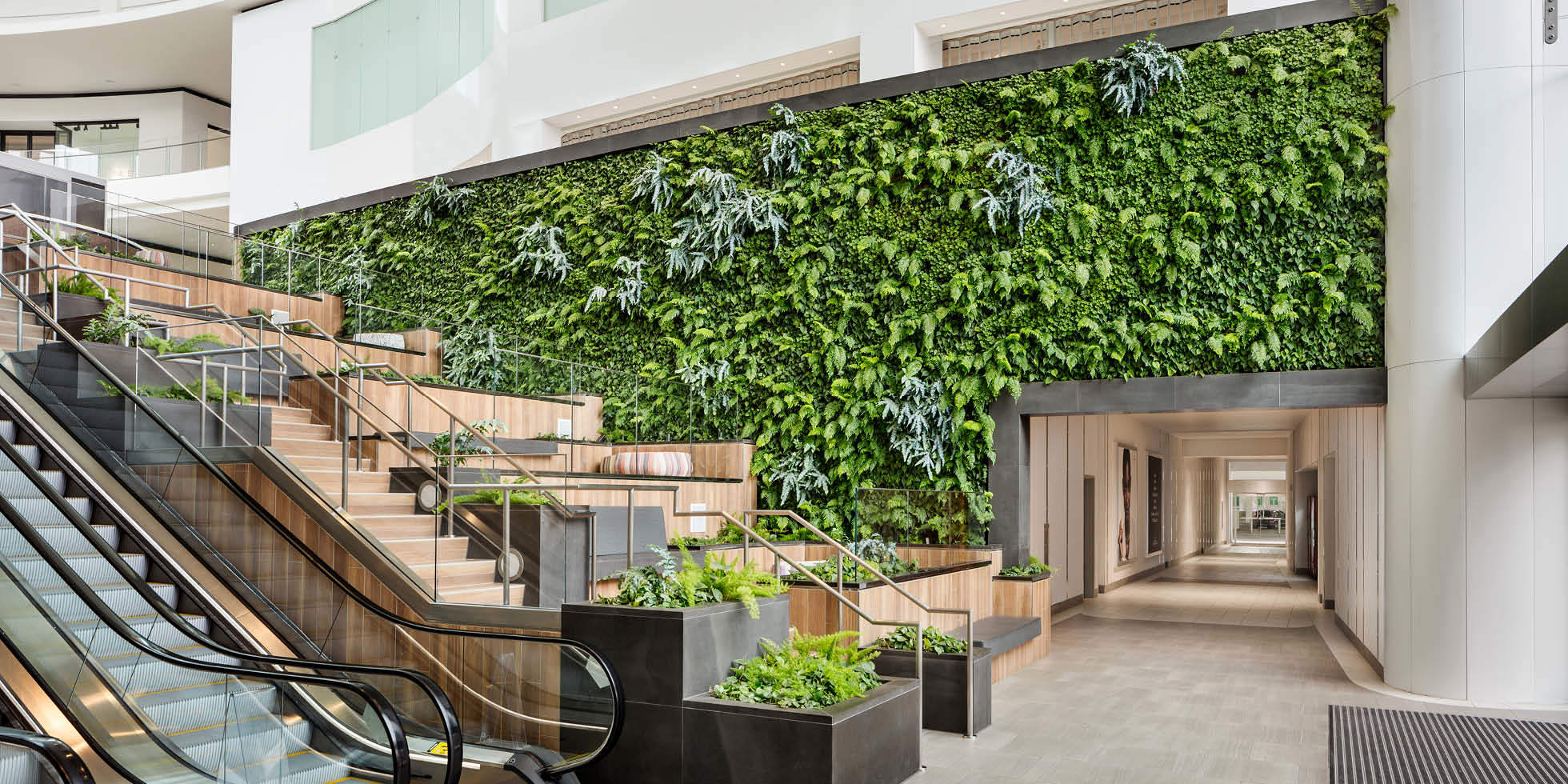 Del Amo Fashion Center Living Wall by Habitat Horticulture - View 4
