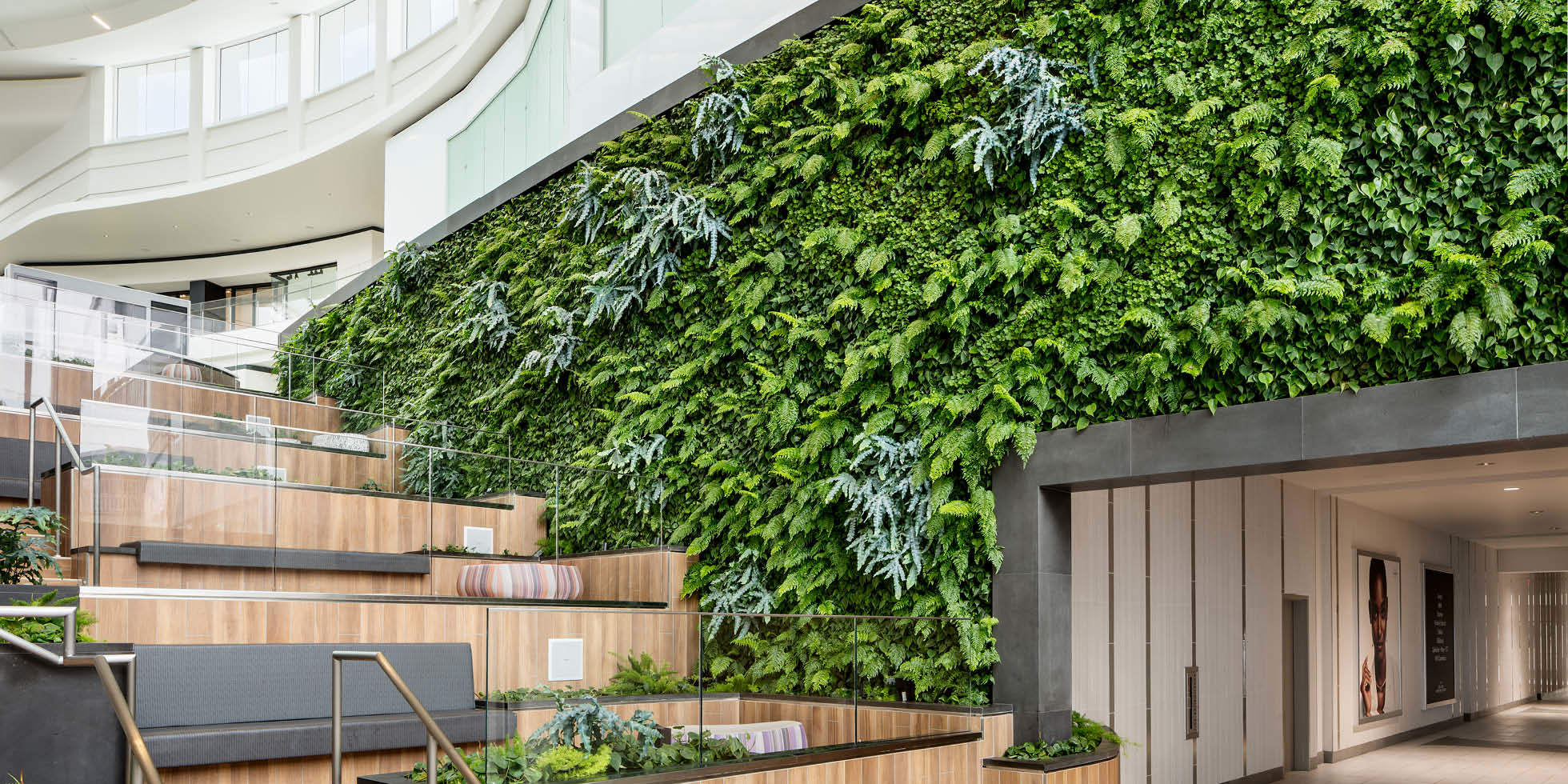 Del Amo Fashion Center Living Wall by Habitat Horticulture - View 1
