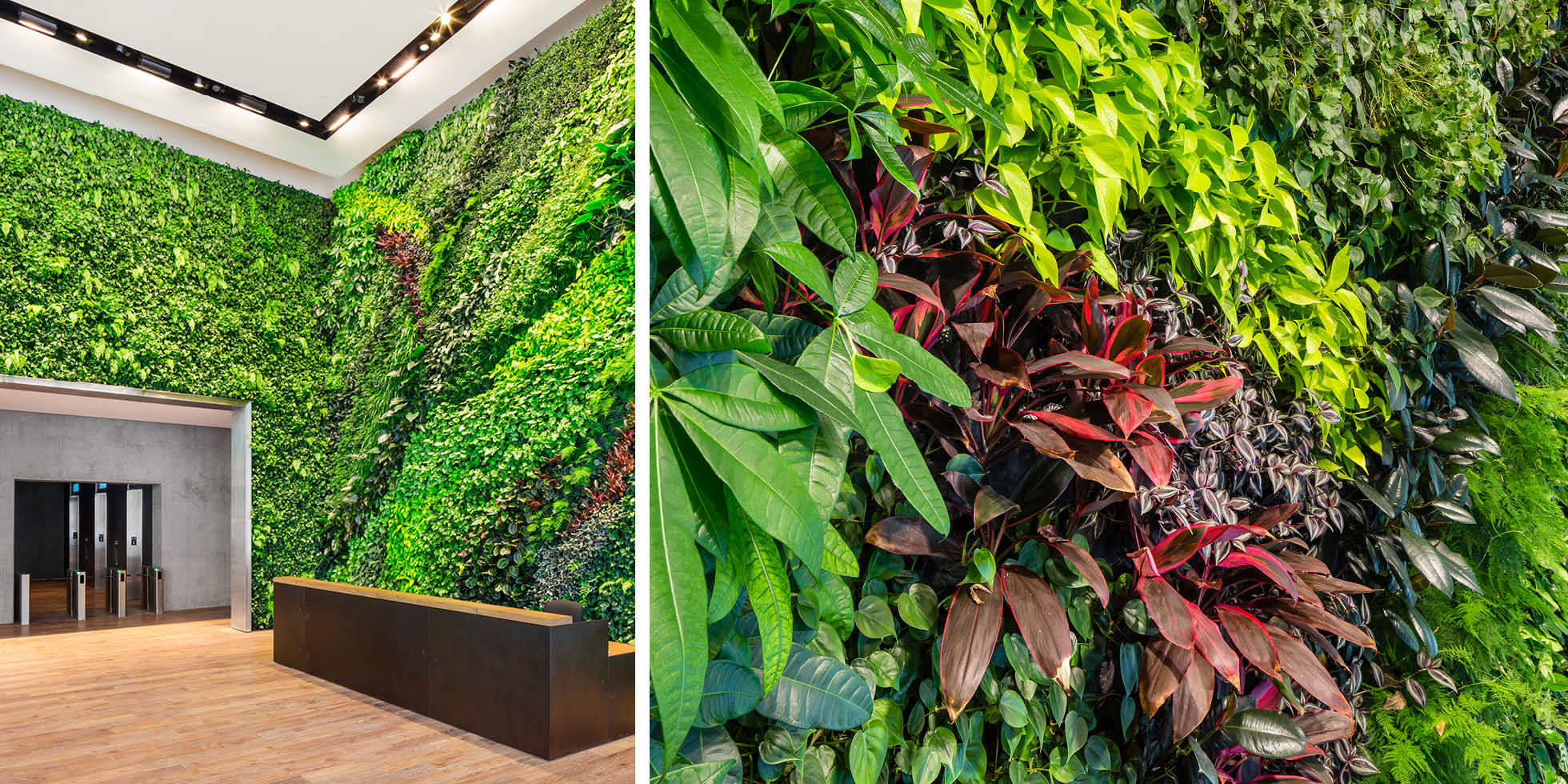 Foundry Square III Living Wall by Habitat Horticulture - View 4