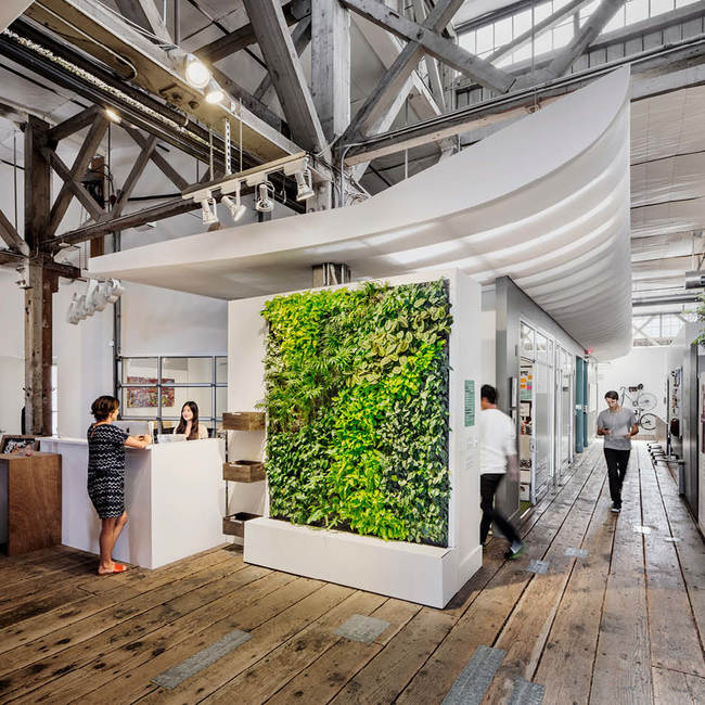 Ideo living wall green wall2