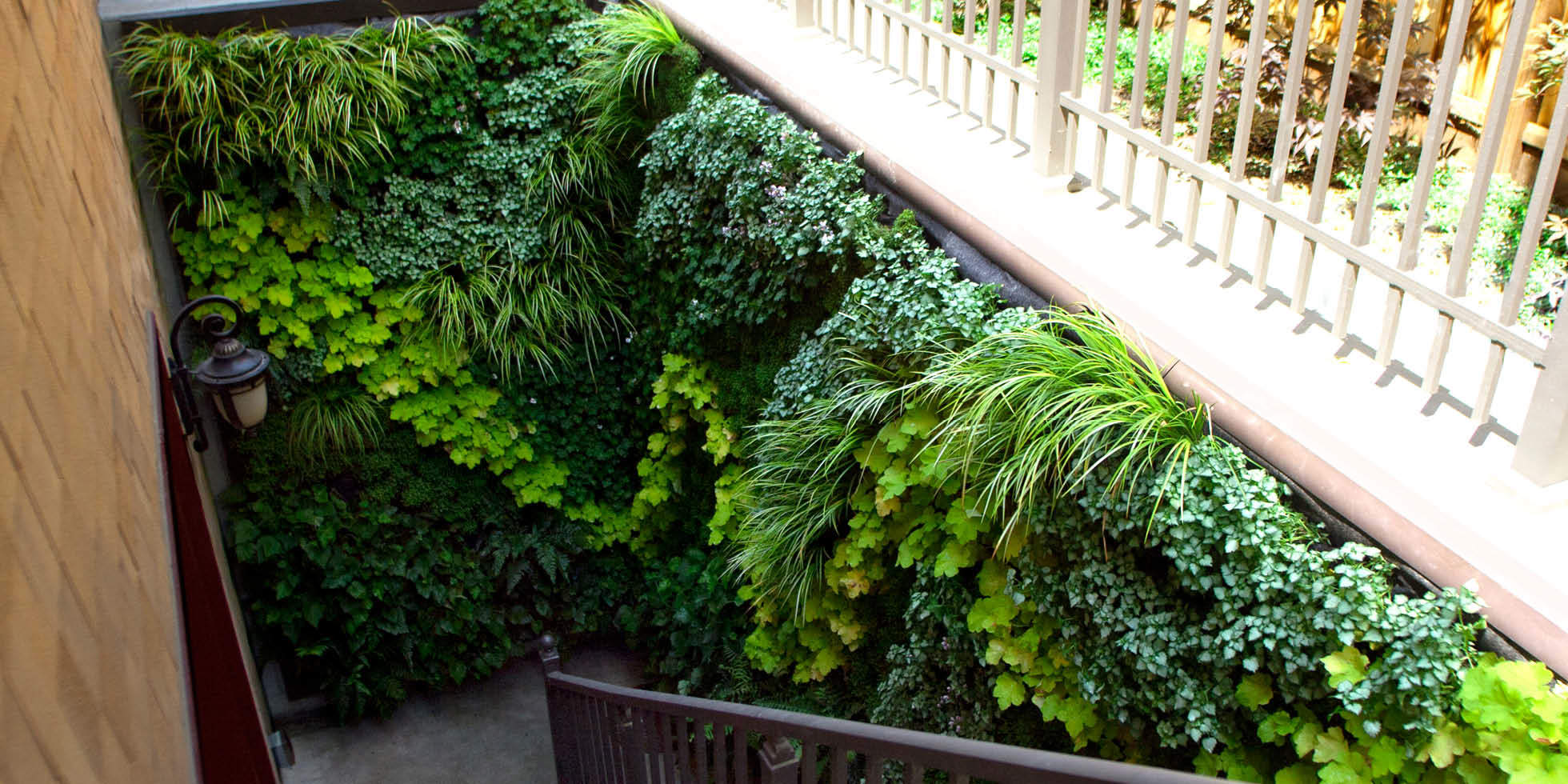 Los Altos Stairwell Living Wall by Habitat Horticulture - View 1