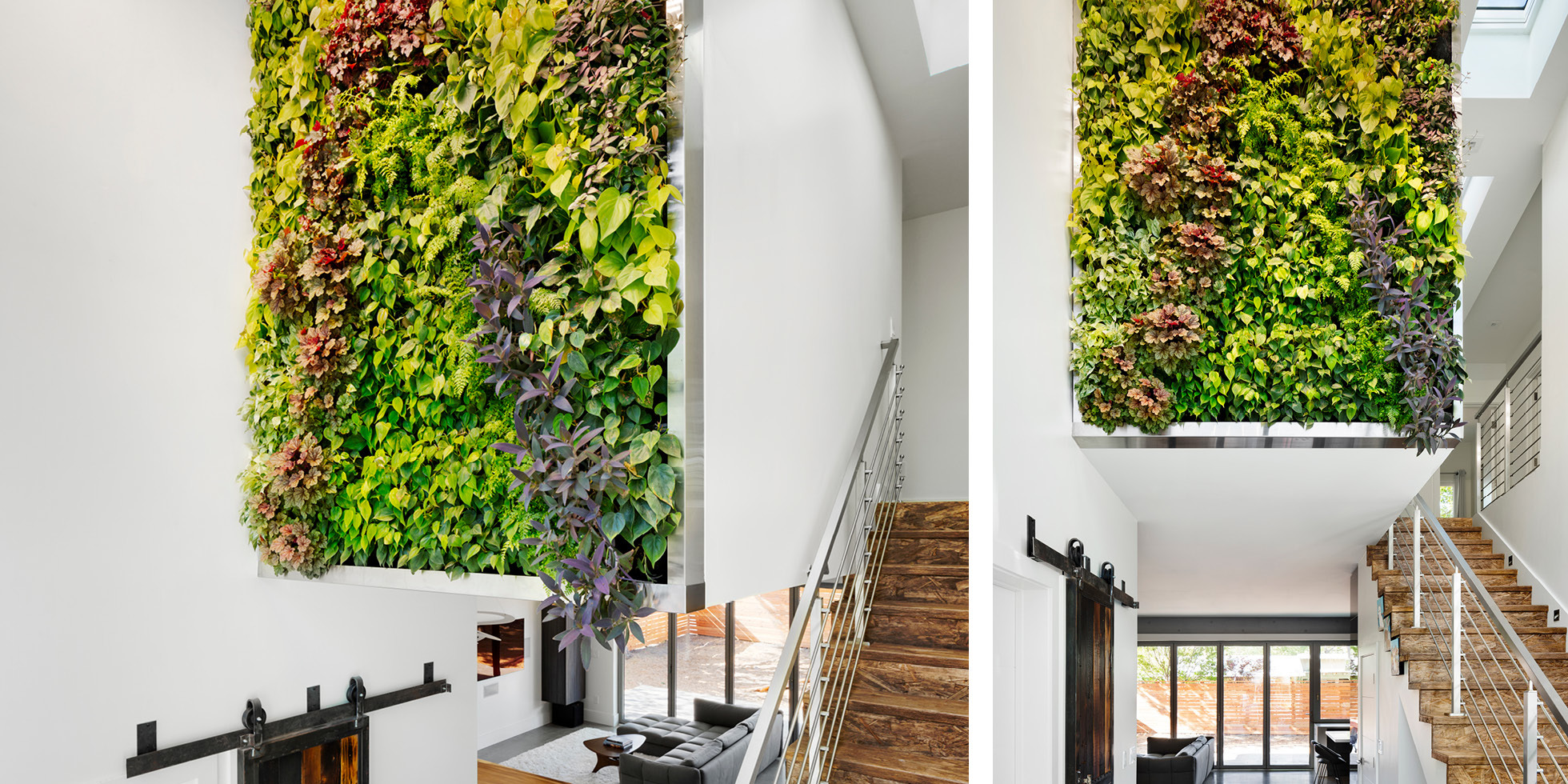Mountain View Residence Living Wall By Habitat Horticulture  View