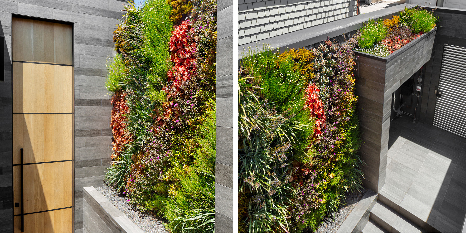 San Francisco Residence Living Wall by Habitat Horticulture - View 1
