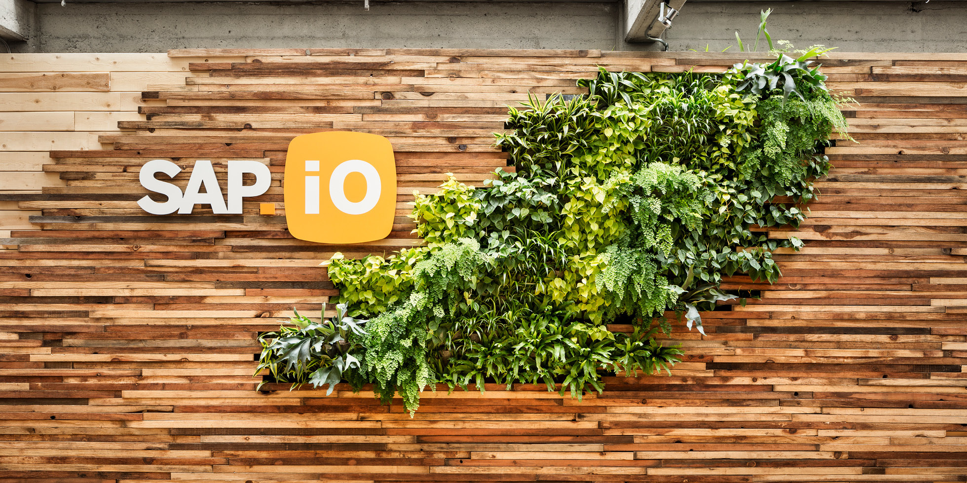 SAP.iO Living Wall by Habitat Horticulture - View 1