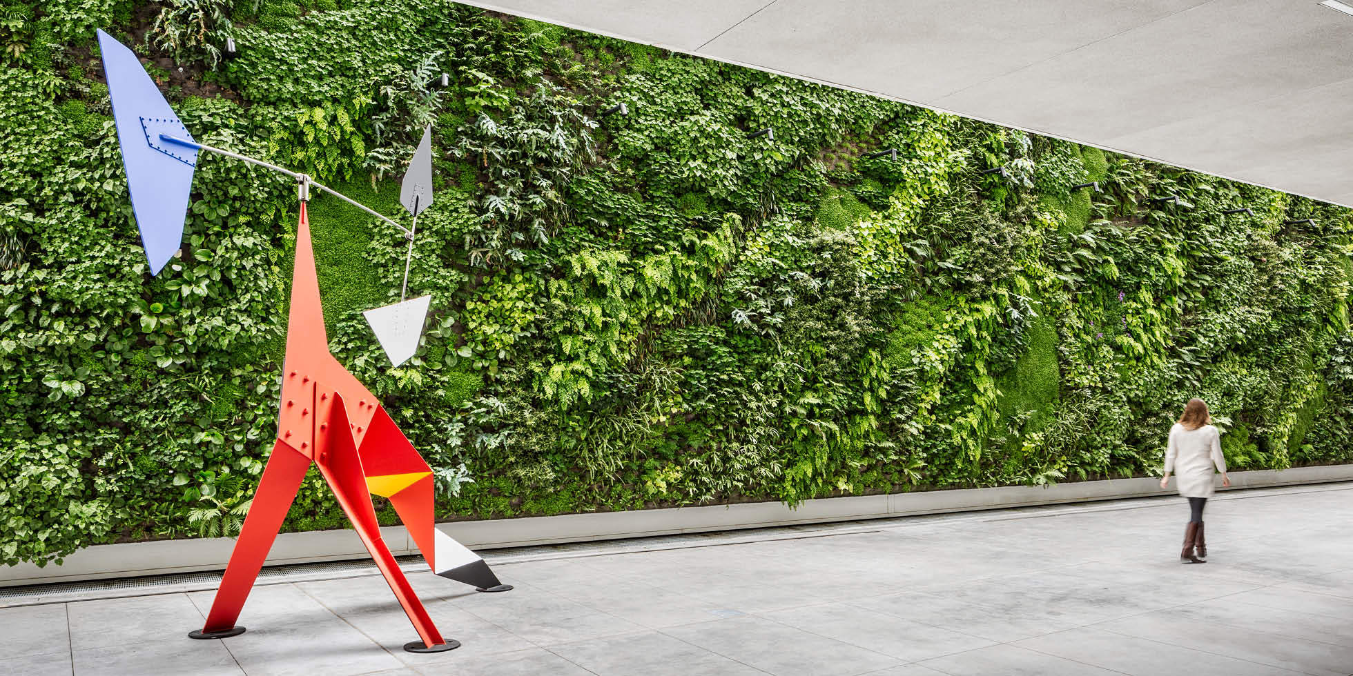 SFMOMA Living Wall By Habitat Horticulture   View 2