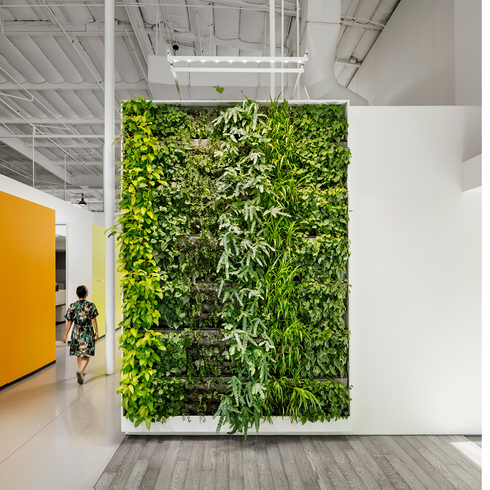 Simplehuman Living Wall by Habitat Horticulture - View 2