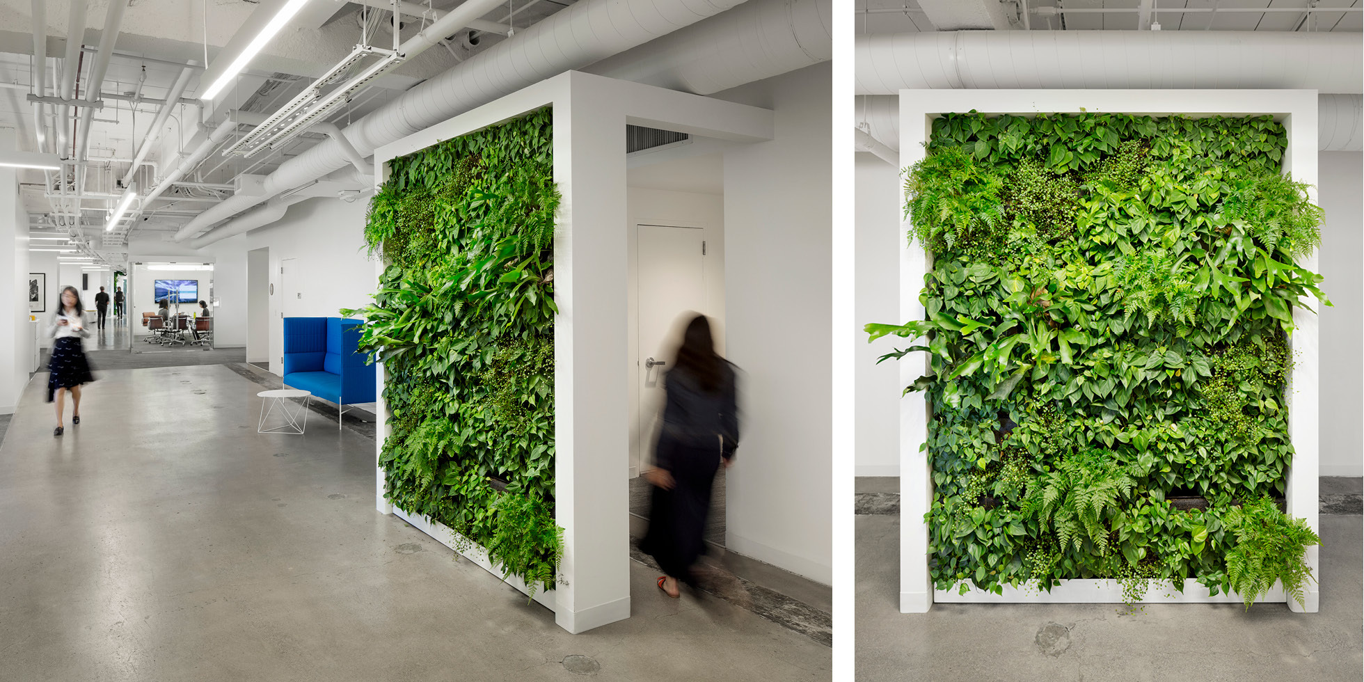 Solar Mosaic Living Wall by Habitat Horticulture - View 3