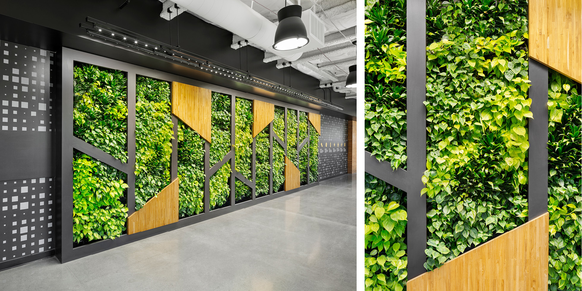 Symantec Living Wall by Habitat Horticulture - View 2