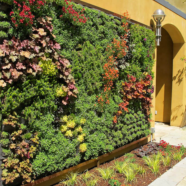 Traeger living wall vertical garden10